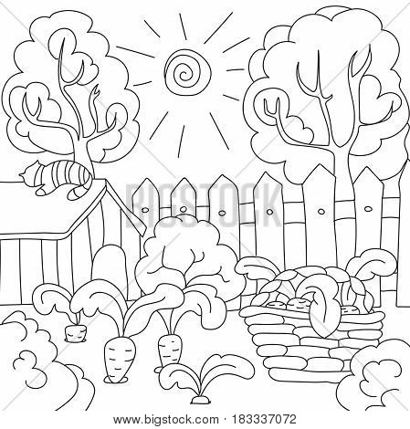 Coloring pages for children, vector coloring book carrots in the garden