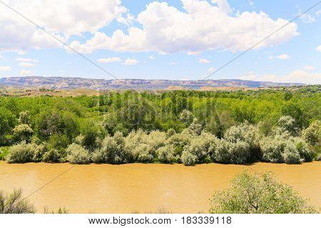 Gunnison River Near Grand Junction