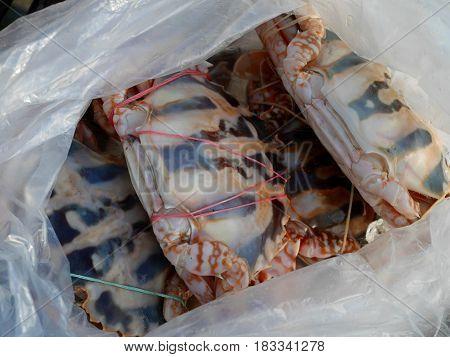 Freshness Flower Crab Or Blue Crabs In Plastic Bag