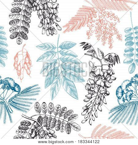 Vintage seamless pattern with Wisteria, Silver wattle, Albizia, Black Locust flowers.