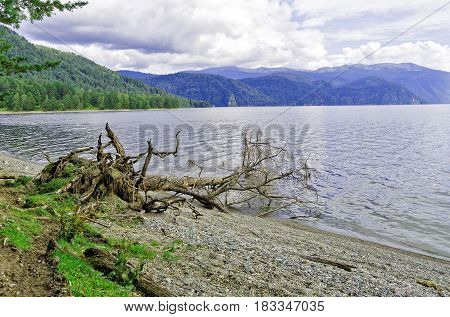 Siberia end of summer. Teletskoye lake view of Cape Chicilgan