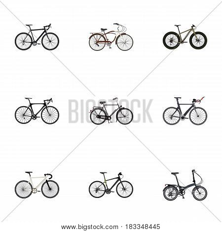 Realistic Road Velocity, Bmx, Hybrid Velocipede And Other Vector Elements. Set Of Sport Realistic Symbols Also Includes Bicycle, Cruise, Bmx Objects.