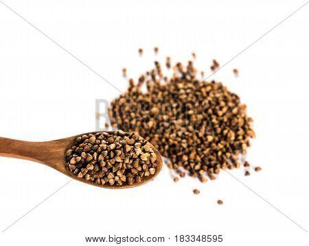 Buckwheat on wooden spoon isolated. Buckwheat grains