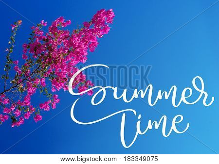 pink bougainvillea against the sky and text Summer time. Calligraphy lettering hand draw.