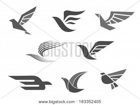 Bird and wings vector icon for company or brand corporate and business identity premium symbols design. Isolated templates set of dove, hawk or eagle birds with spread wing