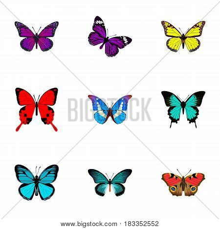 Realistic Bluewing, Sangaris, Archippus And Other Vector Elements. Set Of Beautiful Realistic Symbols Also Includes Hairstreak, American, Bluewing Objects.