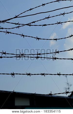 Silhouette of Barbed Wire with Blue Sky Background.