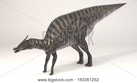 3D Computer rendering illustration of Saurolophus dinosaur