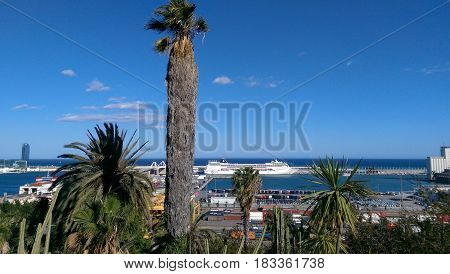 A seaport landscape with palm trees and a clear sky