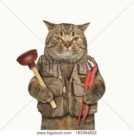 The cat plumber is holding a plunger in one paw and a wrench in other. White background.