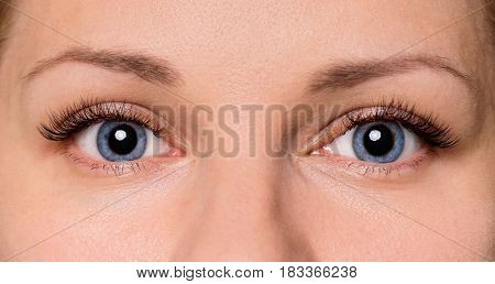 Close-up face of beautiful young woman with beautiful blue eyes and big pretty eyelashes and eyebrows. Macro of human eye - open expressive look.