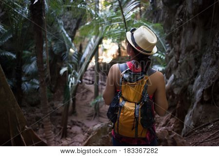Girl among thickets of palms