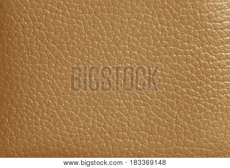 Texture of Light Brown Colored Genuine Leather, Closed up for Background, Pattern