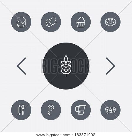 Set Of 9 Cook Outline Icons Set.Collection Of Waffle, Apple Pie, Wheat And Other Elements.