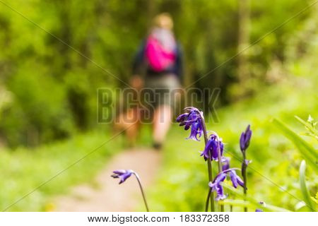 Unfocused female walking dog through woodland path