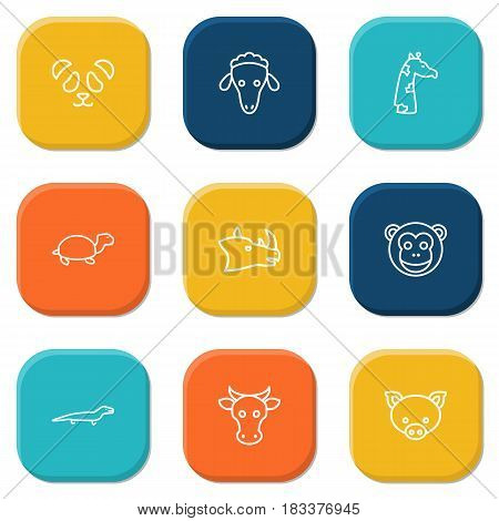 Set Of 9 Brute Outline Icons Set.Collection Of Sheep, Lizard, Pig And Other Elements.