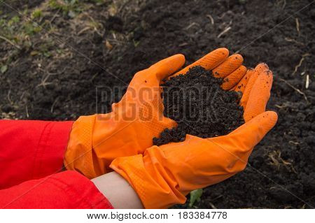 hands, who wears orange rubber gloves with the soil background.