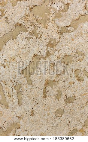 spotted stone texture