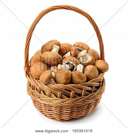 Champignons with brown hats in a wicker basket isolated on white background.
