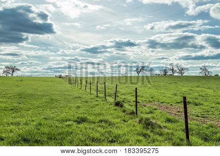 Farm Fence Barbed Wired With Green Meadow And Blue Sky Full Of Clouds