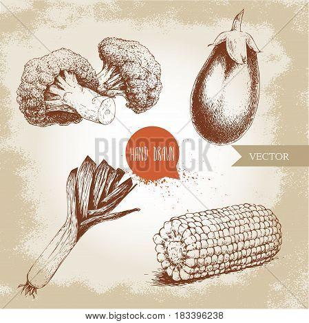 Hand drawn sketch style vegetables set. Leek eggplant broccoli and sweet corn maize piece. Farm fresh food on grunge vintage background.