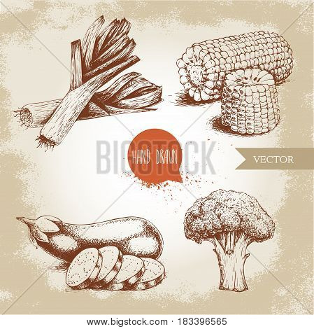 Hand drawn sketch style vegetables set. Leek with slices eggplant with sliced aubergine broccoli and sweet corn maize. Farm fresh food on grunge vintage background.