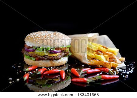 Tasty and appetizing hamburger with some fries