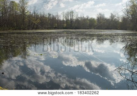 The clouds are being reflected on a fishing pond at the Ashevile East KOA in SwannowaNorth Carolina