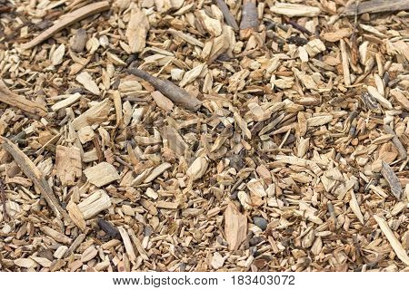 Texture Of Wood Chips In Natural Form