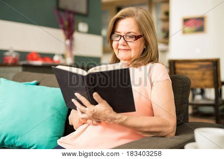 Happy Aged Woman Reading Her Favorite Book