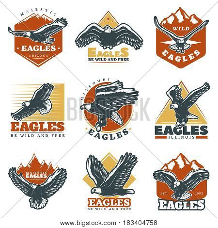 Colored vintage beautiful eagles labels set with inscriptions and bird symbolizing courage and majesty isolated vector illustration