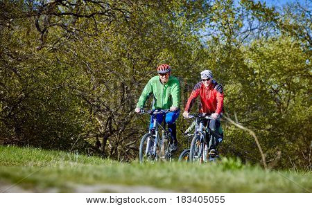 A bike ride along the forest paths in early spring.