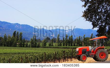 Red tractor parked near vineyard with tall trees and mountain in the distance
