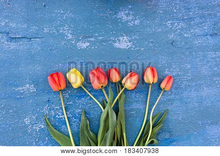 Flowers Tulips On A Wooden Background Grunge Texture Of An Old Blue Paint. An Old Blue Blue Paint On