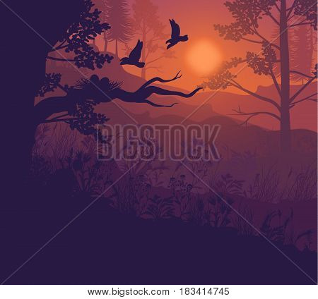 Sunrise forest landscape background with trees plants and birds flying to nest on tree branch vector illustration