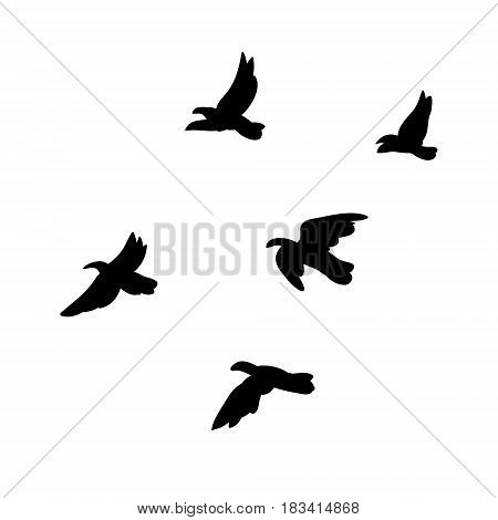 Black flying birds flock concept in monochrome style on white background isolated vector illustration