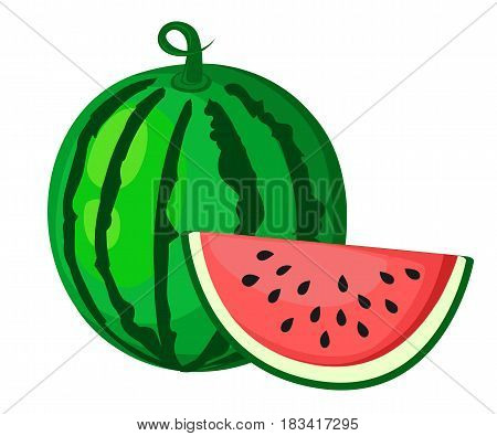 Juicy Watermelon Summer Fruit And A Slice Of Watermelon. Vector Illustration On White Background. El