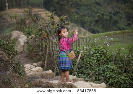 Sa Pa, Vietnam - 14 March, 2017: Unidentified ethnic Hmong minority girl playing on rice terraces in the rural area of Sa Pa, Northern Vietnam, near the border with China.
