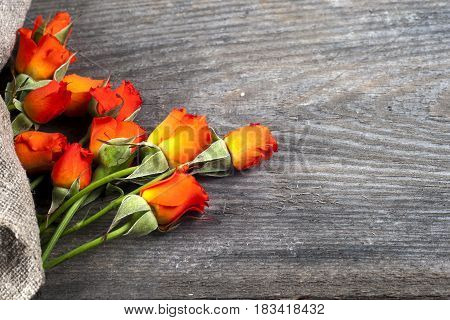 red roses on wooden board Valentines Day background