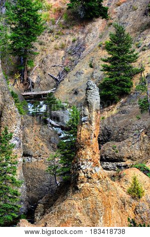 Rock Pinnacle In Yellowstone