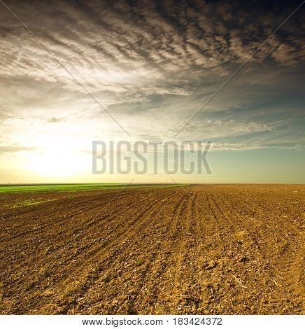 Plowed field in spring time with sky
