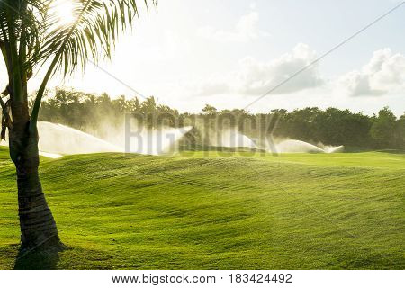 Irrigation system water on a green grass field