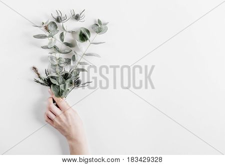 Floral pattern with green leaves of eucalyptus for spring design on white background top view mockup