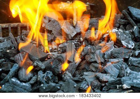 Charcoal Briquettes Firing Up For The Grill