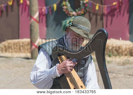 Participant Wearing Typical Clothes Playing Harp
