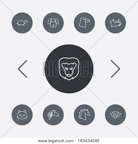 Set Of 9 Brute Outline Icons Set.Collection Of Eagle, Rhino, Mammal And Other Elements.
