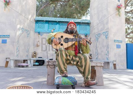 Musician Performing  During The Renaissance Pleasure Faire.