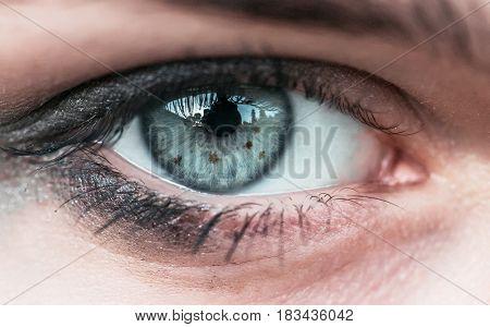 Human eye close-up visible pattern of the iris the pupil. European