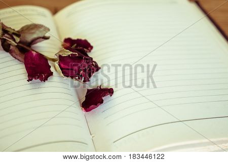 Dry rose on blank notebook. Selective focus. Vintage tone.