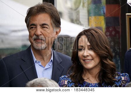 LOS ANGELES - APR 17:  Joe Mantegna, Patricia Heaton at the Gary Sinise Honored With Star On The Hollywood Walk Of Fame on April 17, 2017 in Los Angeles, CA